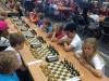 schack 2.jpeg