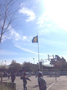 St Eriksdagen flagga